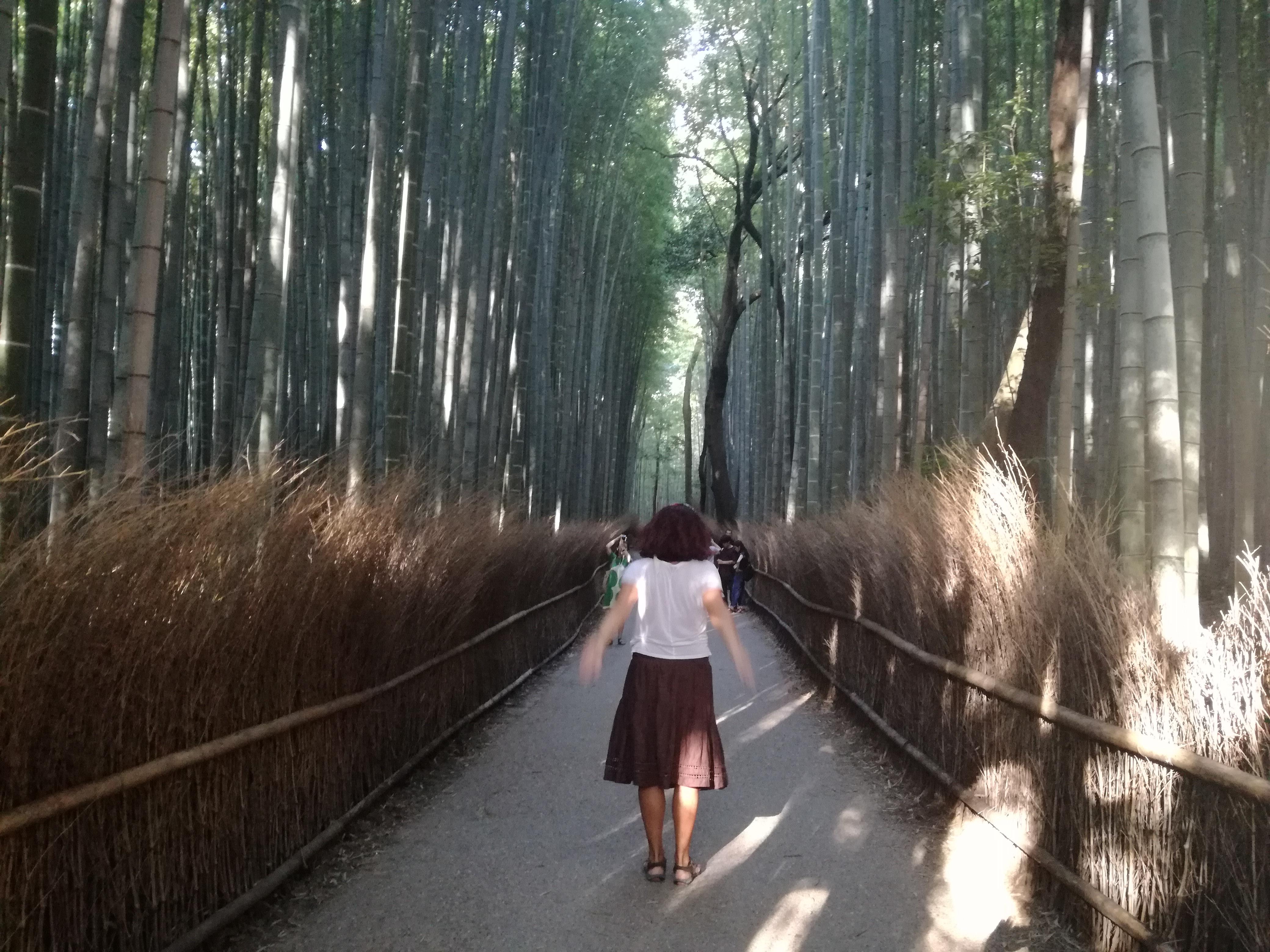Padurea de Bambus din Kyoto, Japonia, sau cand natura se da in spectacol!